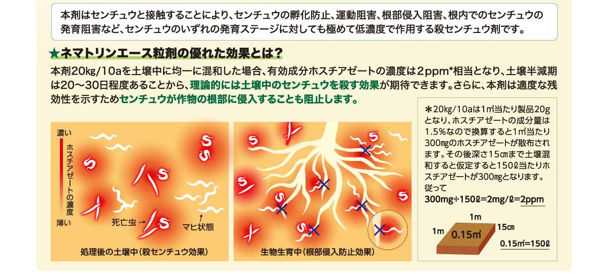 ネマトリンエース粒剤の優れた効果とは?