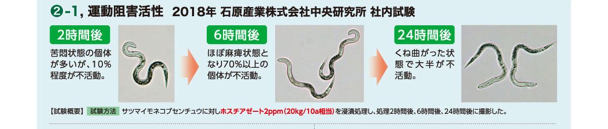 ネマトリンエース粒剤は低濃度でセンチュウの根系への移動、根内への侵入を防止します。