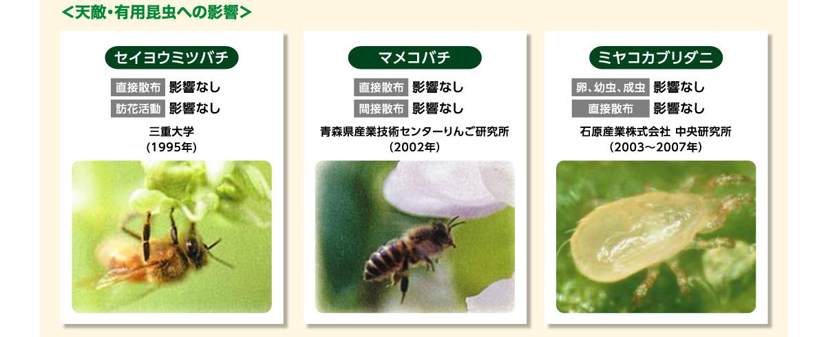 天敵・有用昆虫への影響